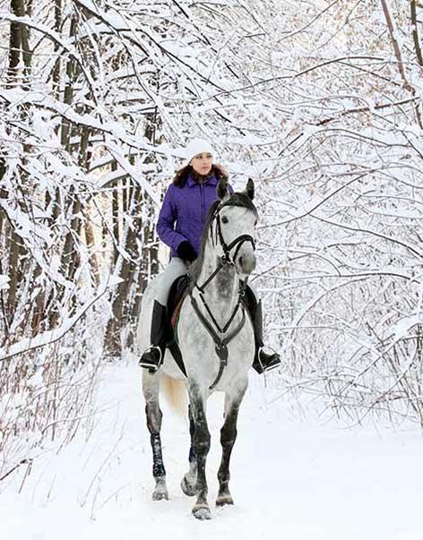 Farmstay im Winter in Canada