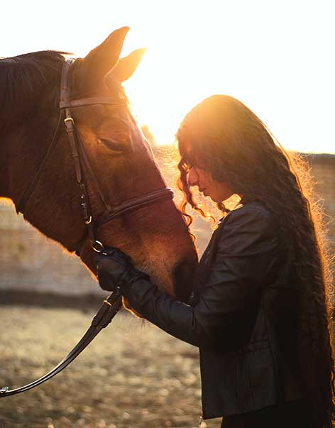 Farmstay mit Pferden in Irland